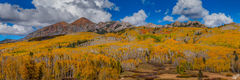 autumn, fall color, foliage, american west