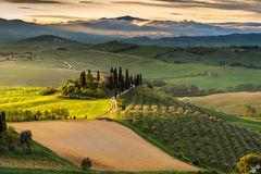 Belleza Toscana
