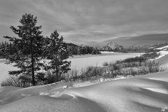 winter, snow, black, white