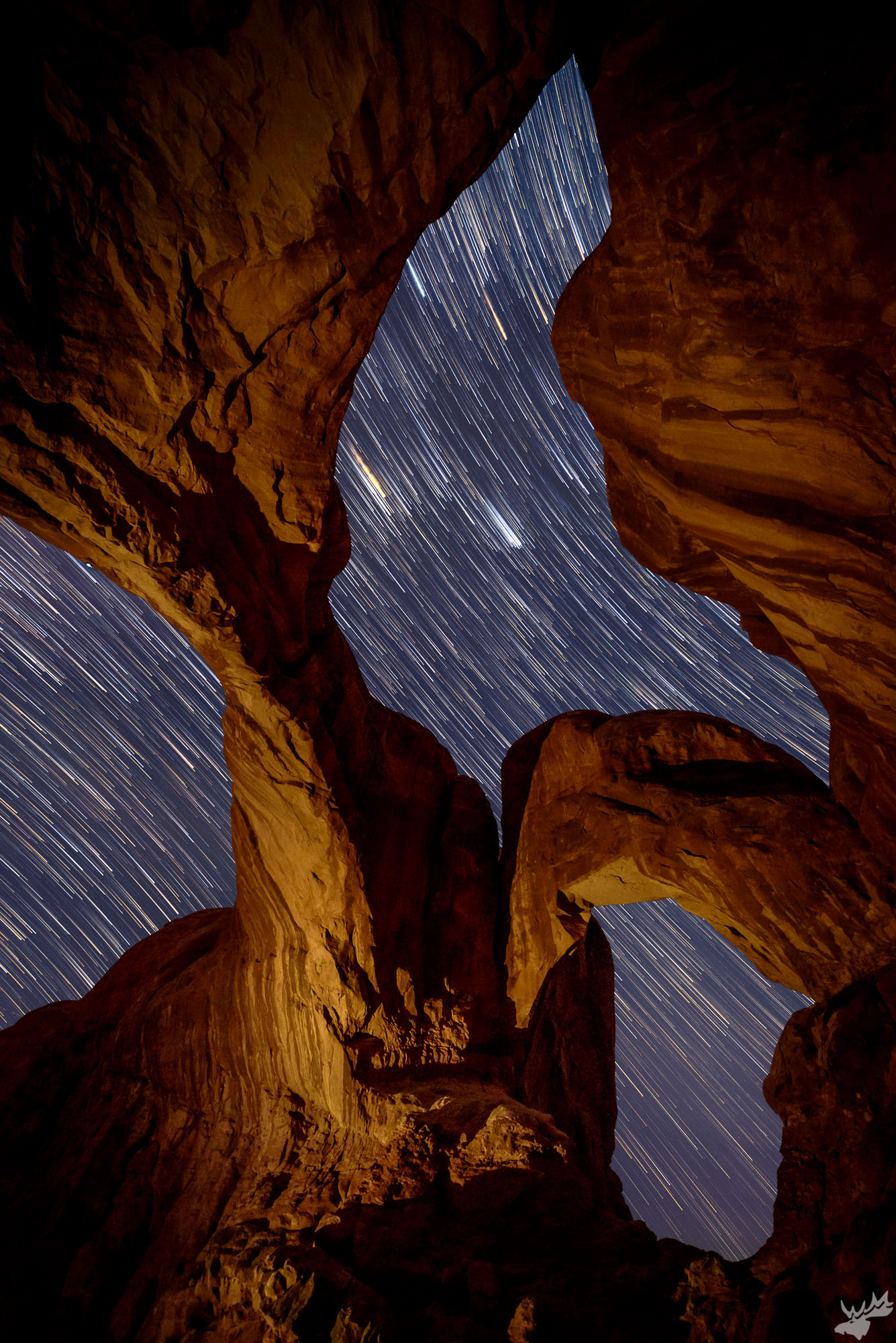 star trails, astrophotography, night